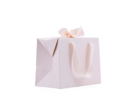Giftbag Large Soft Pink