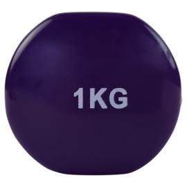 Halter set vanadiumstaal / vinyl - 2 x 1.0 KG - paars