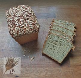 Haverbrood volkoren gist  **glutenarm