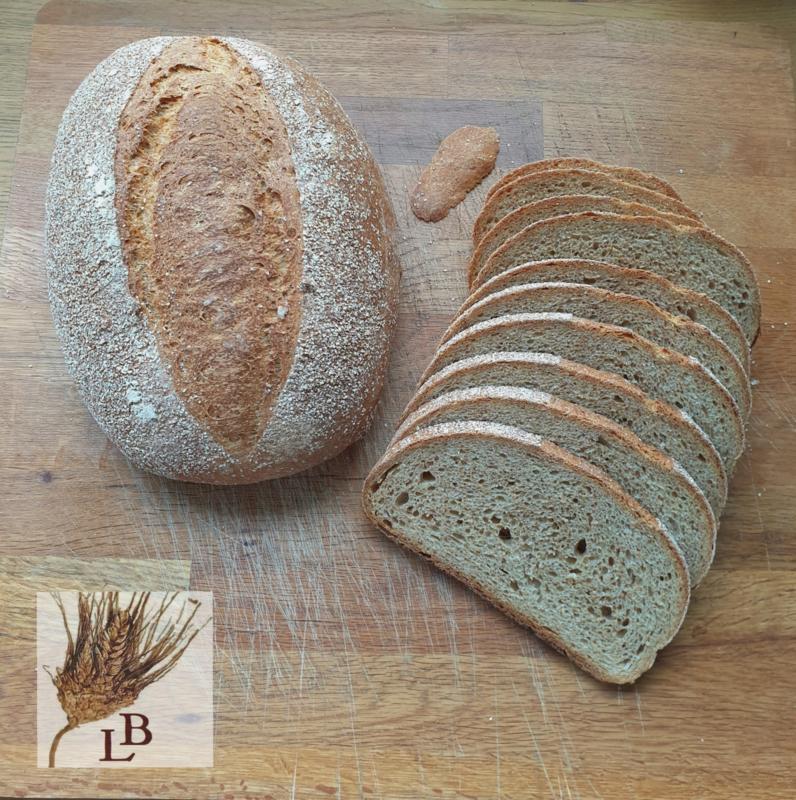 Biologische Beiers landbrood bruin gistbrood