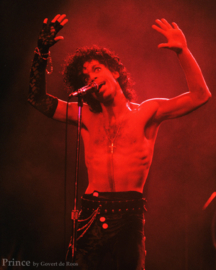 Prince - Red '84