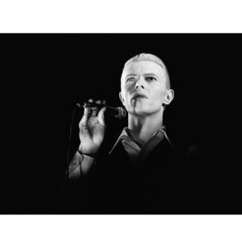 David Bowie door Govert de Roos