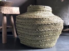 Vaas van zeegras L
