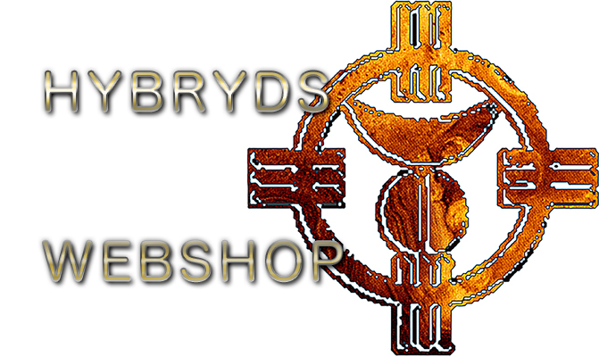 Hybryds music and art