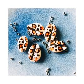 Tijgerprint - Kauri schelpenbandje (een schelpje)