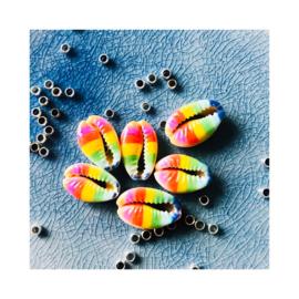 Pride - Kauri schelpenbandje (een schelpje)