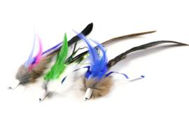 Tabby tijger furr& feather