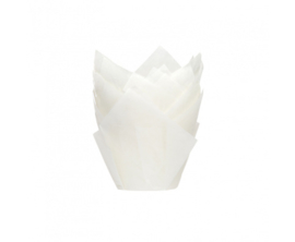 Muffin Tulp cups - wit 36st