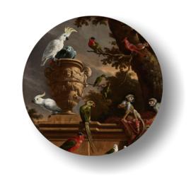 Papegaai -rond op 3mm  plaat diverse afm