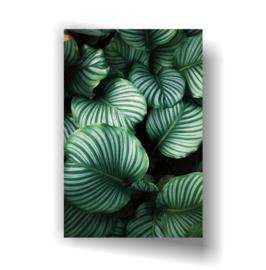 Leaf op 3mm plaat in diverse afm