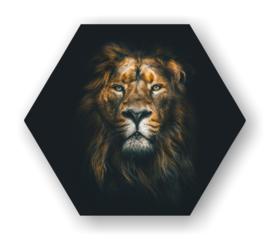 Leeuw -Hexagon op 3mm plaat diverse afm