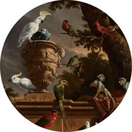 Papegaai behangcirkel