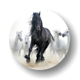 Wild paard -rond op 3mm  plaat diverse afm