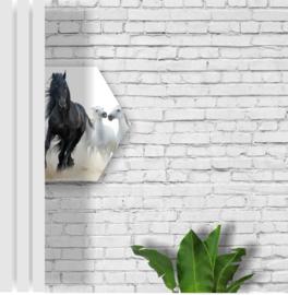 Print Zandstenen muur 5m2