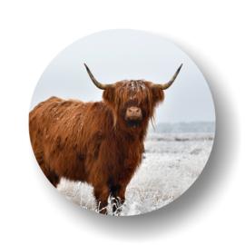 Schotse Hooglander -rond op 3mm  plaat diverse afm