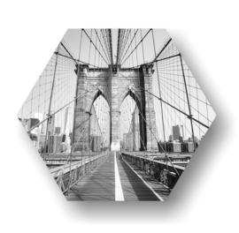 Blooklyn bridge -Hexagon op 3mm plaat diverse afm