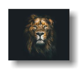 Leeuw op 3mm plaat in diverse afm