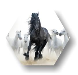 Wild paard -Hexagon op 3mm plaat diverse afm