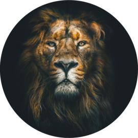 Leeuw behangcirkel