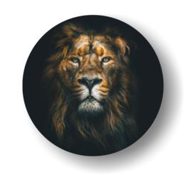 Leeuw -rond op 3mm  plaat diverse afm