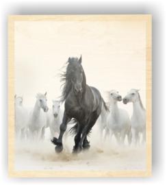 Wild paard op 9mm hout