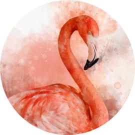 Flamingo behangcirkel