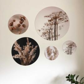 Muurcirkel House of Valley - Dried flower
