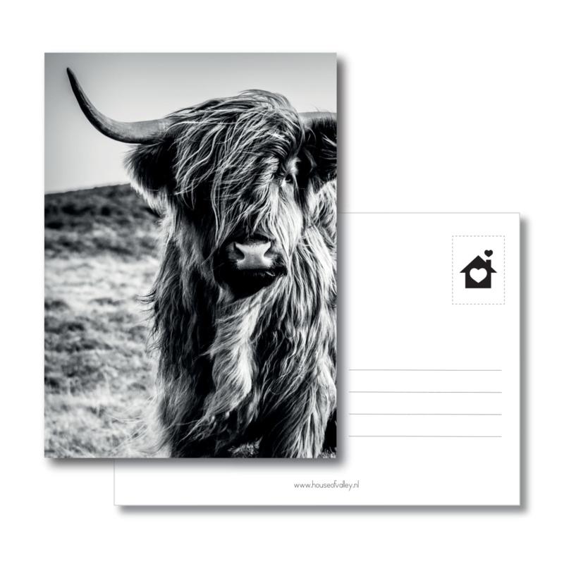 A6 kaart | Highlander 2