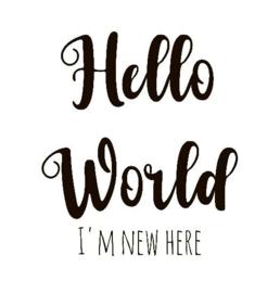 Strijkapplicatie hello world