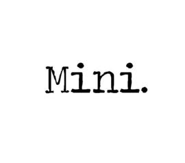 Strijkapplicatie mini