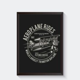 Trimotor Biplane vliegtuig vintage Poster