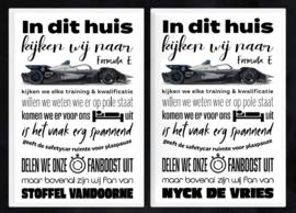 Formula E fan poster