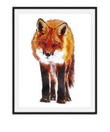 Poster van vos in kleur