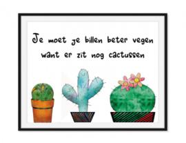 Cactus Toiletposter - Kleur poster