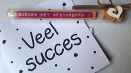 Succes met afstuderen - Flessenpost + wenskaart