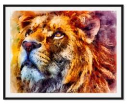 Poster van leeuw in kleur