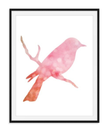 Vogel op tak - Dierenposter