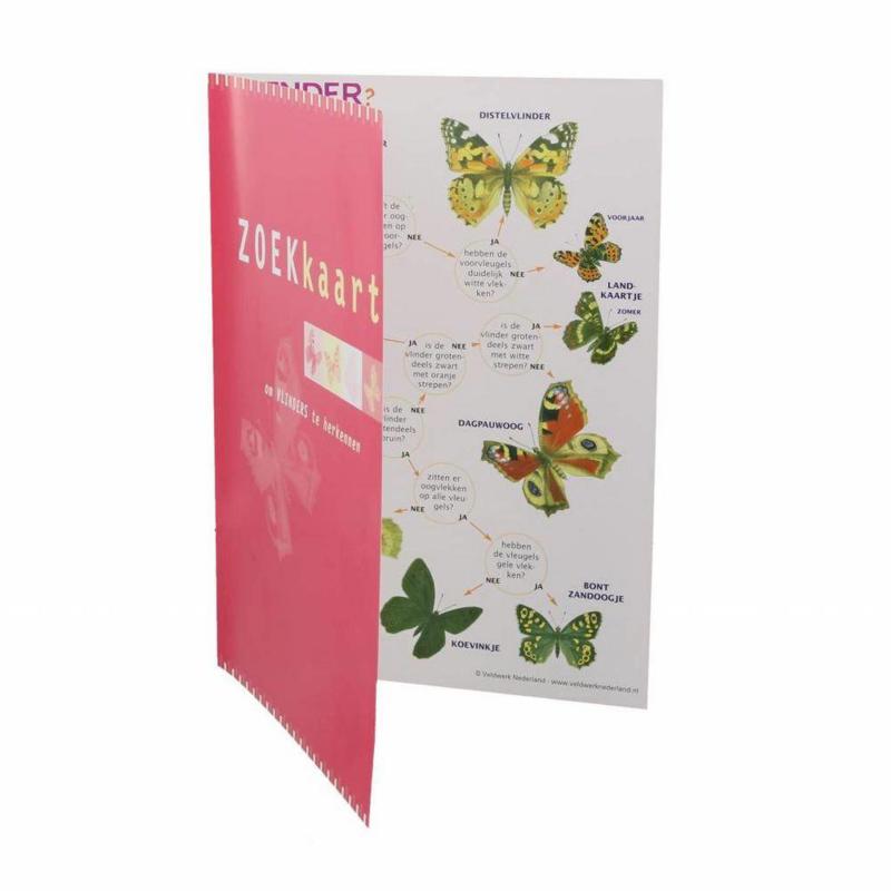 Vlinders  gelamineerd