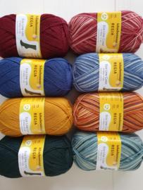 Regia Eco Line Uni & Color Pakket 8 Bollen