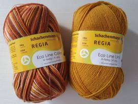 Regia Eco Line Uni & Color Geel 2 Bollen