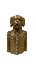 GOLD PRINCE DOG