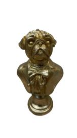 GOLD OBER DOG