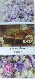 3 wenskaarten met envelop blanco bloem keuze uit 10 series klik hier voor de andere series