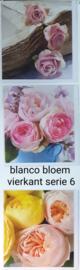 3 stuks blanco wenskaart vierkant  bloem met envelop  keuze uit 10 series klik hier voor andere series