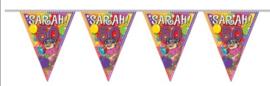 Vlaggenlijn 10 meter met leeftijden Sarah