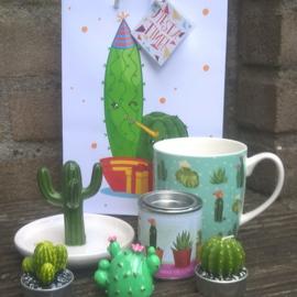 Giftset cactus