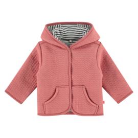 baby girls jacket