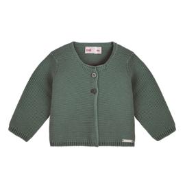 CONDOR - Cardigan lichen green