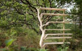 De Boekenboom