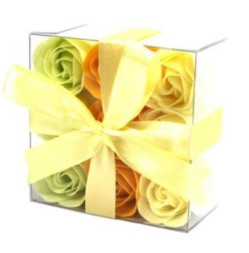 9 voorjaars rozen